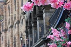 Victoria-Street-Edinburgh-Spring
