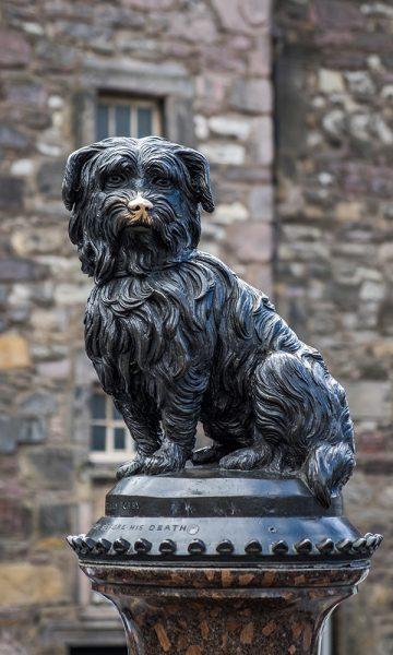 The statue in Edinburgh of Greyfriars Bobby