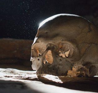A skull in a dark cellar