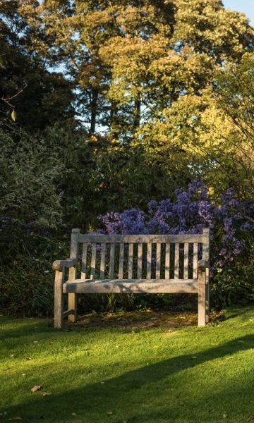 Empty bench in Princes Street Gardens Edinburgh
