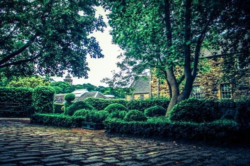 Hidden garden in Edinburgh