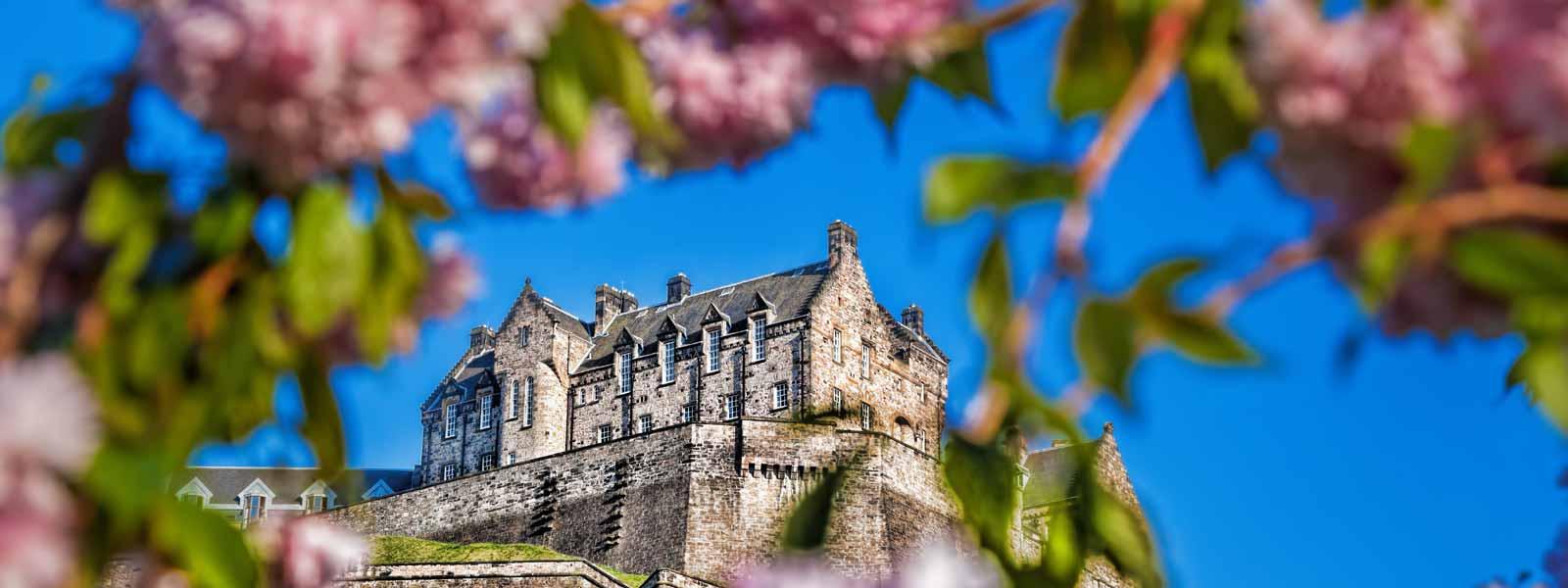 Edinburgh Castle through pink blossom trees