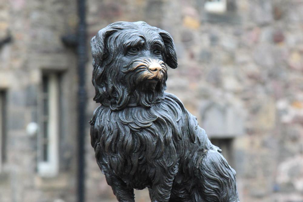Greyfriars Bobby skye terrier dog statue in Edinburgh