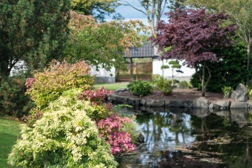 Japanese Garden in Edinburgh